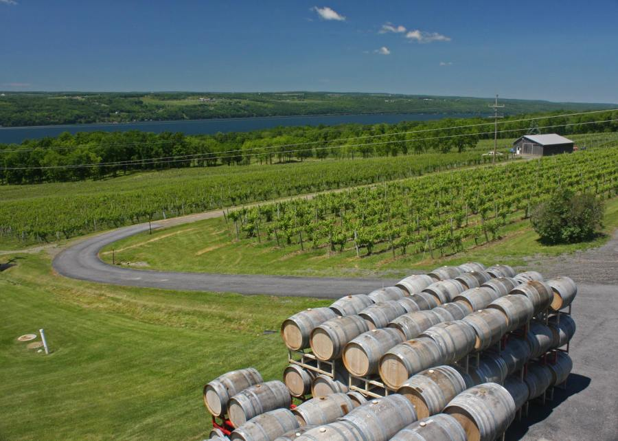 New York - Seneca Lake - cantina/winery - Don Harmer