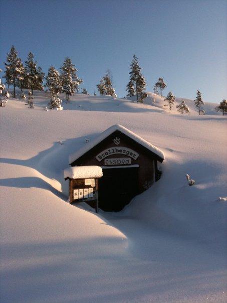 winter in winterland